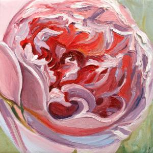 Rose-Petals-II-by-Marie-Cameron-2013-oil-on-canvas-6x6in-
